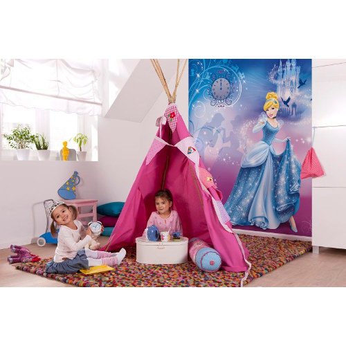 184 x 254cm Cinderellas Night Mural