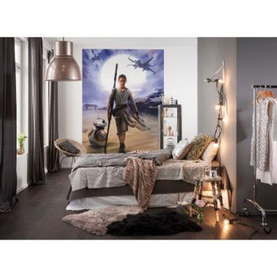 184 x 254cm Star Wars Rey Mural
