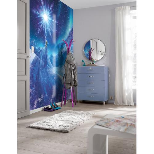 184 x 254cm Frozen Snow Queen Mural
