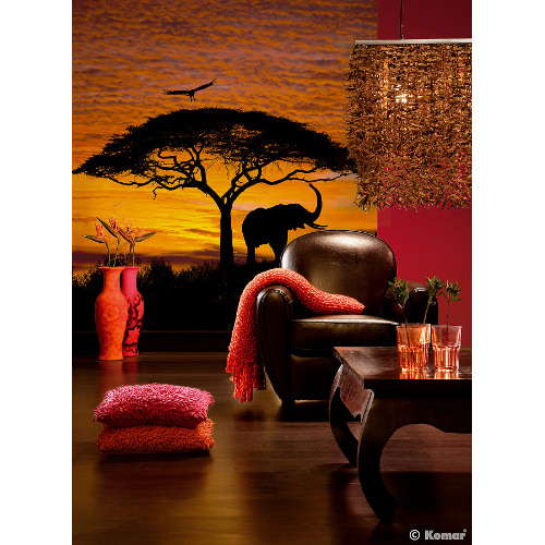 194 x 270cm African Sunset Mural
