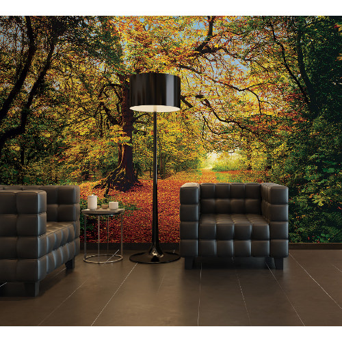 388 x 270cm Autumn Forest Mural