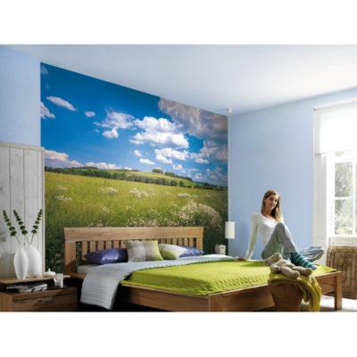 368 x 254cm Meadow Mural