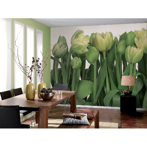 368 x 254cm Tulips Wall Mural