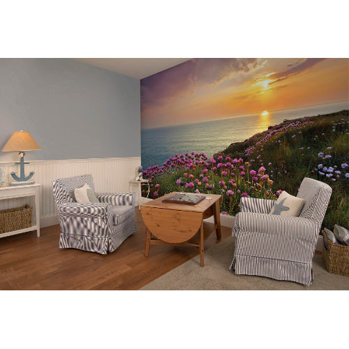 368 x 254cm Lands End Wall Mural