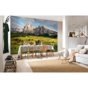 368 x 254cm Alpen Mural