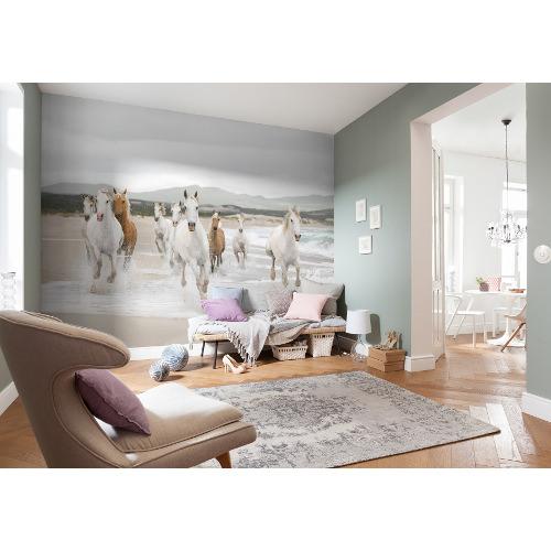 368 x 254cm White Horses Mural