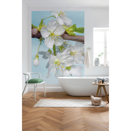 184 x 248cm Blossom Wall Mural