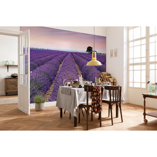 368 x 248cm Provence Mural