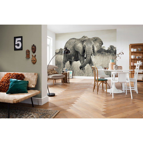 368 x 248cm Elephant Mural