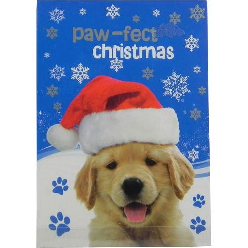 Christmas Cards Cats & Dogs Pack of 12