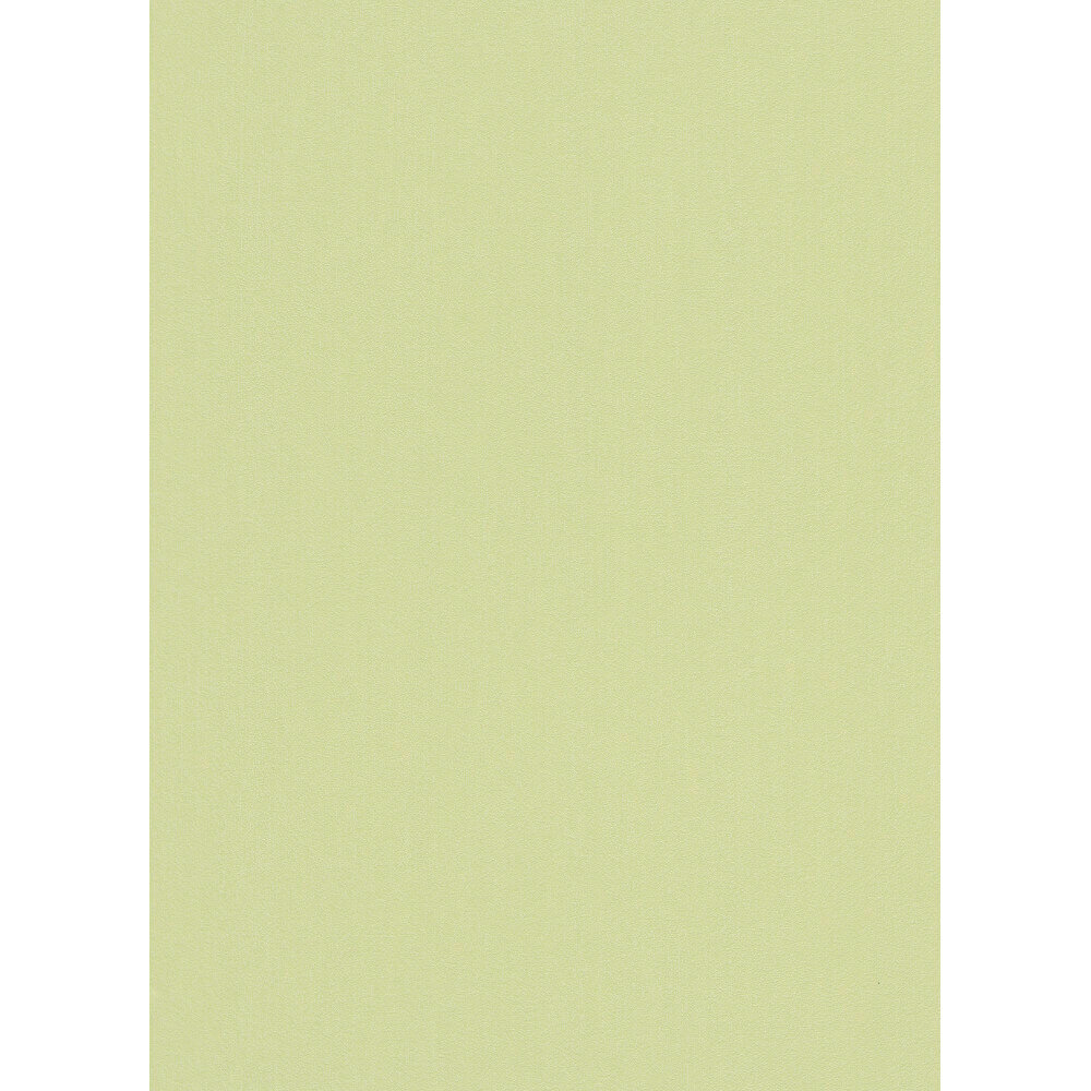 Erismann My Garden Plain Wallpaper Light Green 6486 07 Full Roll