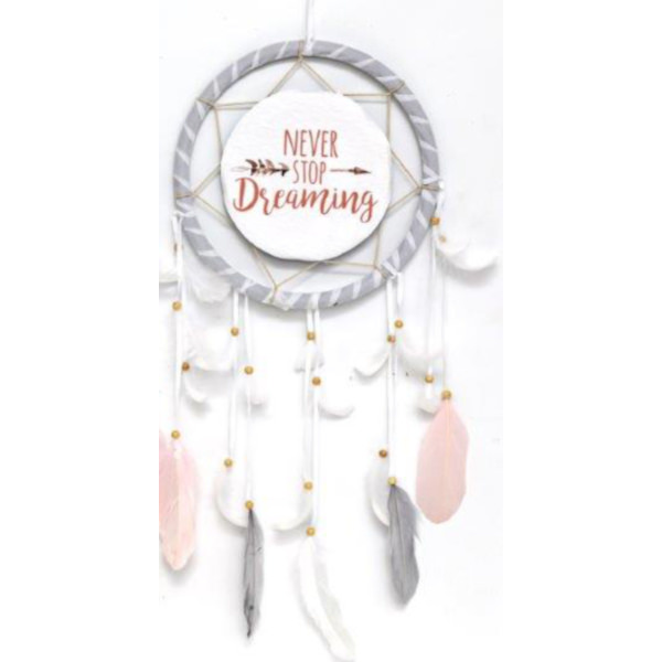 Never Stop Dreaming Dreamcatcher