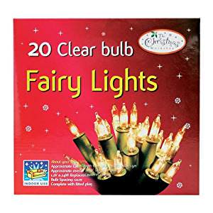 Fairy Lights with Clear Bulbs Set of 20