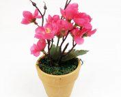 Artificial Pink Begonia in Terracotta Pot